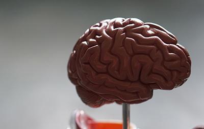 全ての仕事で必要な記憶力とは?