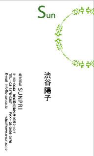 デザイン名刺 カジュアル DCT-021