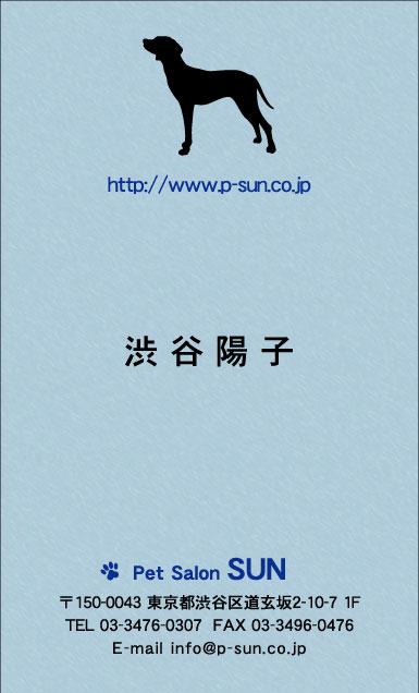 デザイン名刺 カジュアル DCT-028