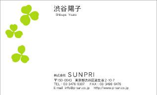 デザイン名刺 カジュアル DCY-025
